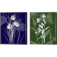 Framed Jewel Stems 2 Piece Canvas Print Set