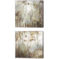 Framed Fine Birch 2 Piece Canvas Print Set