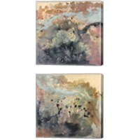 Framed Coulee  2 Piece Canvas Print Set