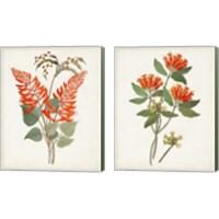 Framed Botanical of the Tropics 2 Piece Canvas Print Set
