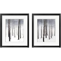 Framed Hazy Winter Walk 2 Piece Framed Art Print Set