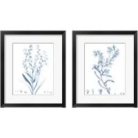 Framed Antique Botanical in Blue 2 Piece Framed Art Print Set