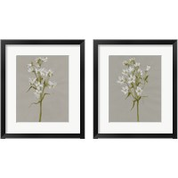 Framed White Field Flowers 2 Piece Framed Art Print Set