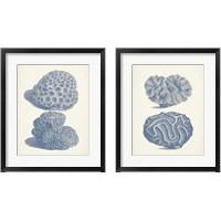 Framed Antique Coral Collection 2 Piece Framed Art Print Set