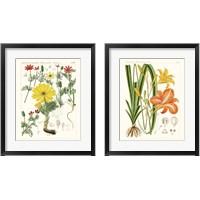Framed Bright Botanicals 2 Piece Framed Art Print Set