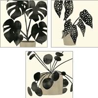 Framed Plantling 3 Piece Art Print Set