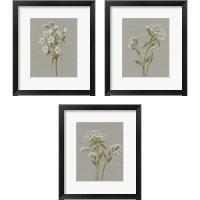 Framed White Field Flowers 3 Piece Framed Art Print Set