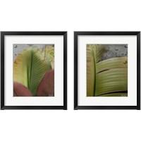 Framed Butterfly Palm 2 Piece Framed Art Print Set