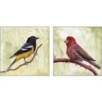 Framed Backyard Birds 2 Piece Art Print Set
