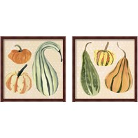 Framed Decorative Gourd 2 Piece Framed Art Print Set