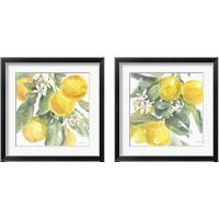 Framed Citrus Charm Lemons 2 Piece Framed Art Print Set