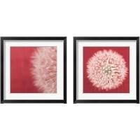 Framed Dandelion on Red 2 Piece Framed Art Print Set
