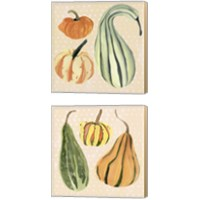 Framed Decorative Gourd 2 Piece Canvas Print Set