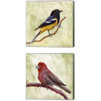 Framed Backyard Birds 2 Piece Canvas Print Set