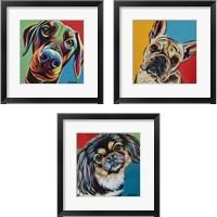 Framed Chroma Dogs 3 Piece Framed Art Print Set