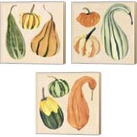 Framed Decorative Gourd 3 Piece Canvas Print Set