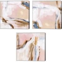 Framed Salt Flat Tracks 3 Piece Canvas Print Set