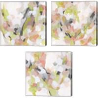 Framed Dogwood Prism 3 Piece Canvas Print Set