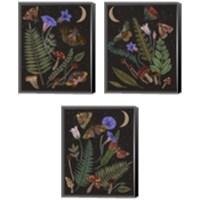Framed Dark Forest 3 Piece Canvas Print Set