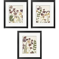 Framed Pressed Flower Arrangement 3 Piece Framed Art Print Set