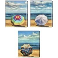 Framed Beach Umbrella 3 Piece Canvas Print Set