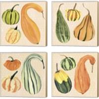 Framed Decorative Gourd 4 Piece Canvas Print Set