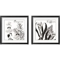 Framed Flowering Herbs 2 Piece Framed Art Print Set