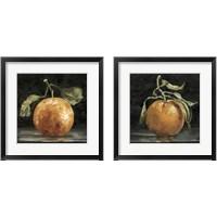 Framed Dark Orange Deux 2 Piece Framed Art Print Set