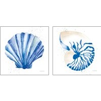 Framed Seashell 2 Piece Art Print Set