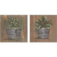 Framed Plant in Pail 2 Piece Art Print Set