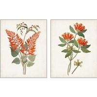 Framed Botanical of the Tropics 2 Piece Art Print Set