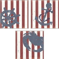 Framed American Coastal 3 Piece Art Print Set