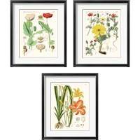 Framed Bright Botanicals 3 Piece Framed Art Print Set