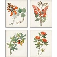 Framed Botanical of the Tropics 4 Piece Art Print Set