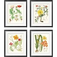 Framed Bright Botanicals 4 Piece Framed Art Print Set