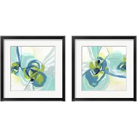 Framed Peacock Vortex 2 Piece Framed Art Print Set