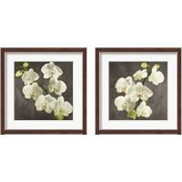 Framed Orchids on Grey Background 2 Piece Framed Art Print Set