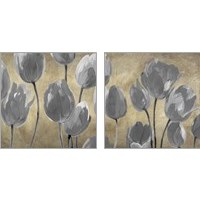 Framed Grey Tulips 2 Piece Art Print Set