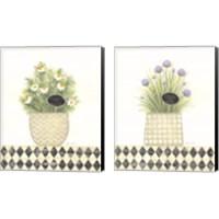 Framed Herb 2 Piece Canvas Print Set
