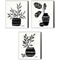 Framed Botanical Sketches 3 Piece Canvas Print Set