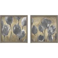 Framed Grey Tulips 2 Piece Framed Art Print Set