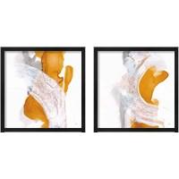 Framed Amber Wash 2 Piece Framed Art Print Set
